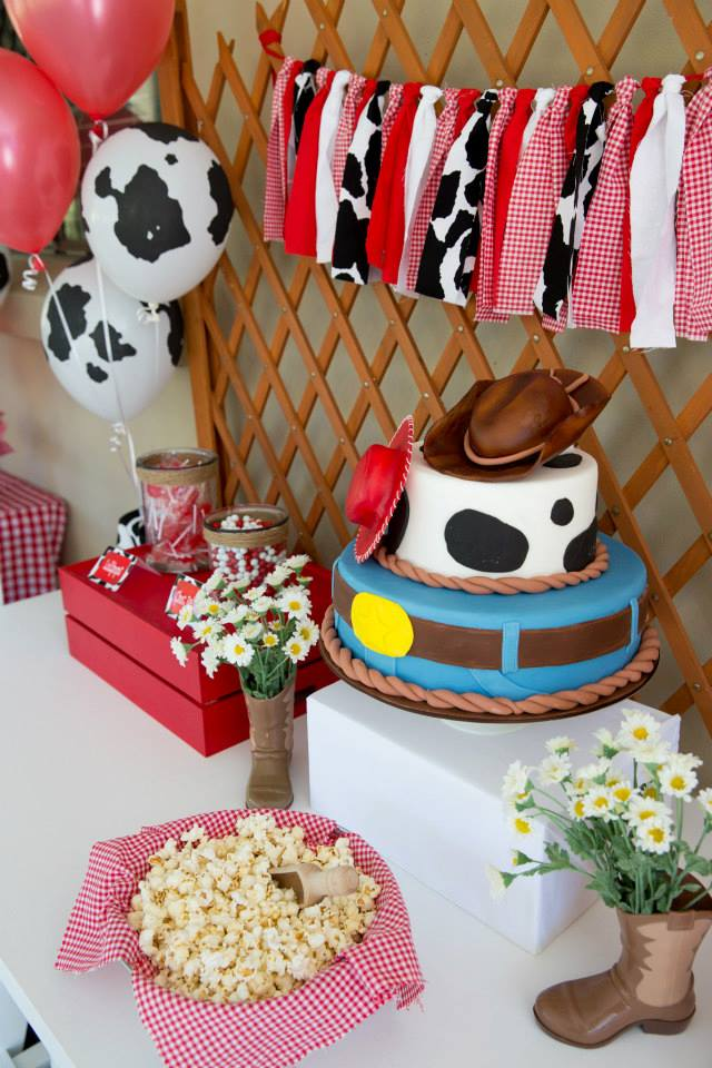 country themed birthday party ideas
