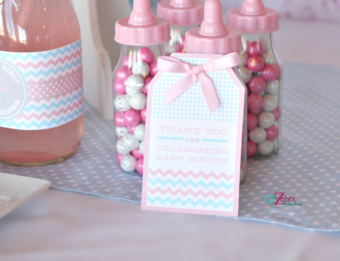 Baby gender reveal party baby shower ideas themes games for Baby shower decoration ideas for twins
