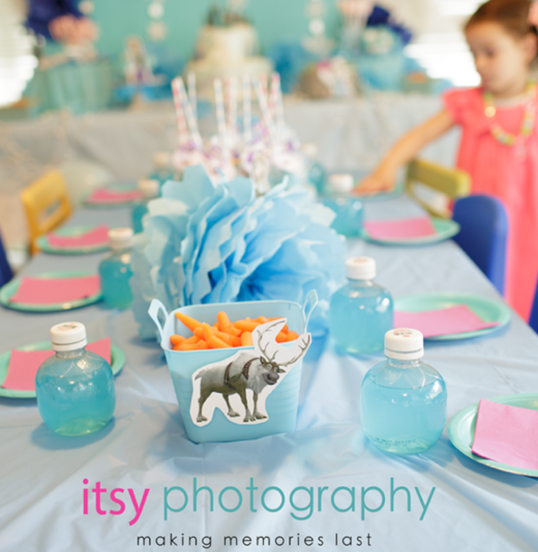 disney's frozen party ideas perfect for birthday party baby shower ...