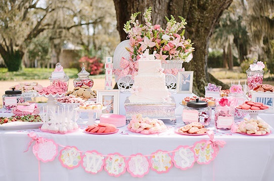 Baby Shower Girl Themes 2014 ~ Southern baby shower baby shower ideas themes games