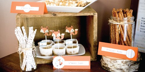 Mr. Foxy Fox Baby Shower