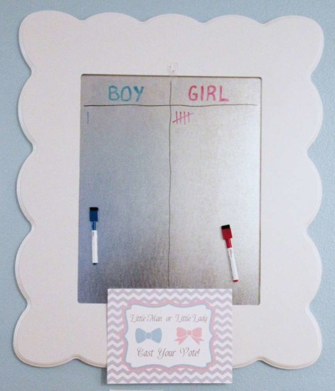 Little Man or Little Lady Gender Reveal cast your vote
