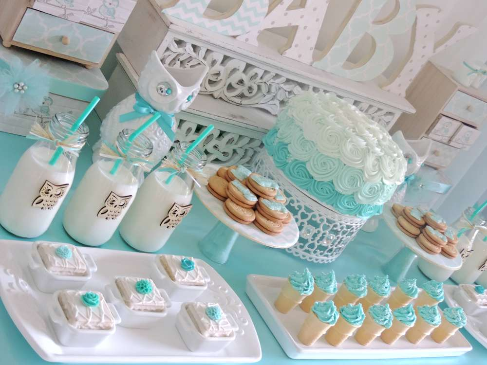 Welcome home baby owl shower baby shower ideas themes for Baby party decoration