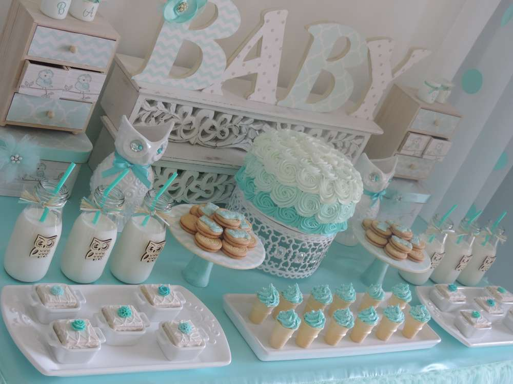 Welcome home owl baby shower ideas ombre aqua baby for Baby shower at home decorations
