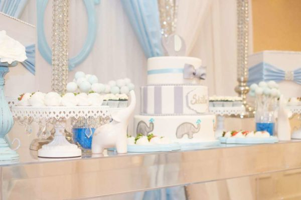 blue-and-white-elephant-themed-baby-shower-snacks