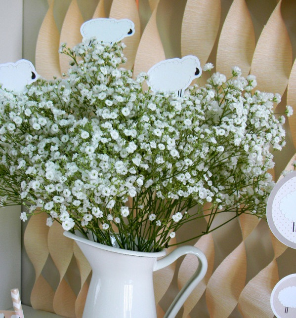 little-lamb-baby-shower-ideas-babys-breath