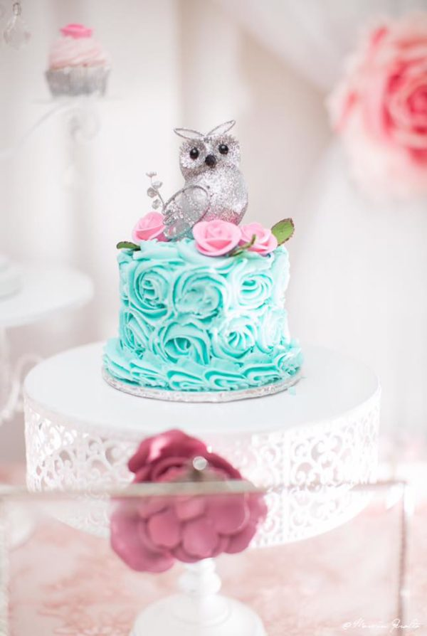 peach-and-blue-owl-baby-shower-mini-cake