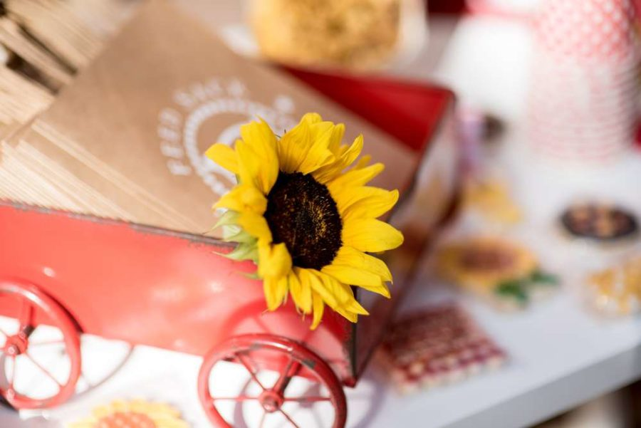 backyard-bbq-baby-shower-sunflower