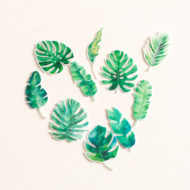 edible-double-sided-pre-cut-tropical-leaves-toppers