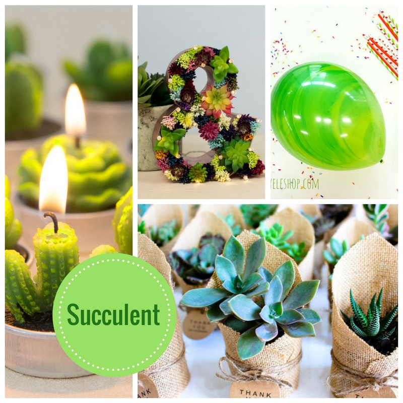 Succulent Baby Shower Decoration Amp Idea Collection Baby